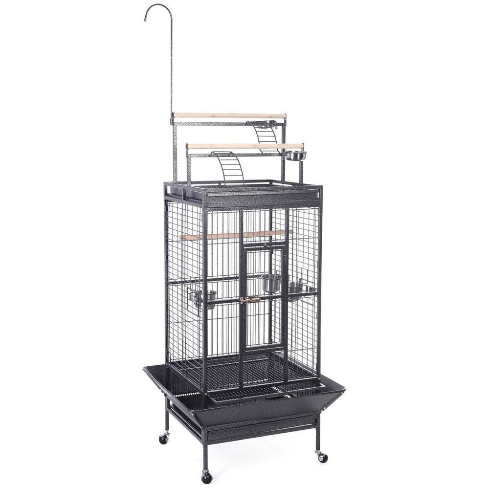 new parrot bird pet cage macaw african grey cage cockatiel house stand lock bl ebay. Black Bedroom Furniture Sets. Home Design Ideas
