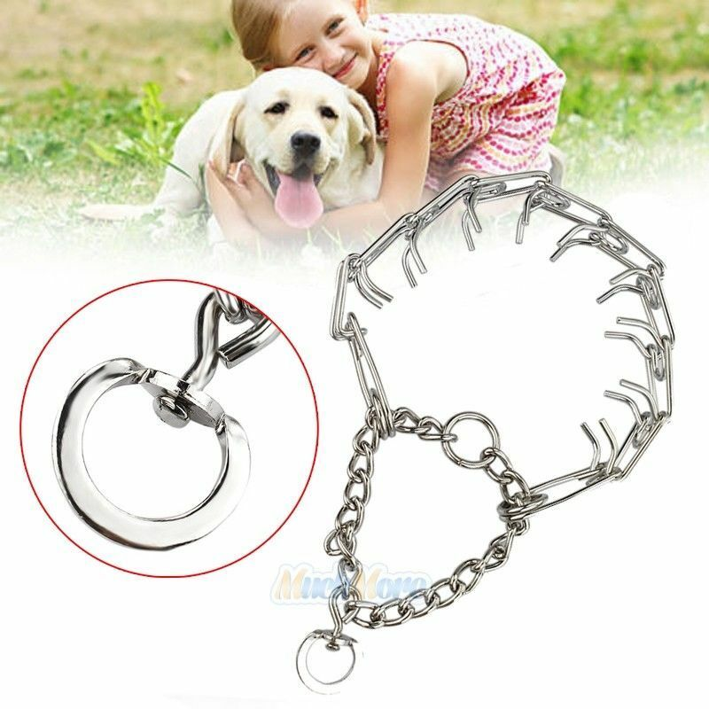 What Is A Prong Collar For A Dog