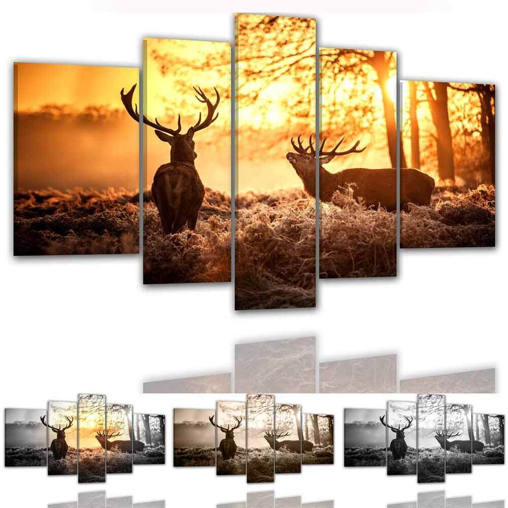 cs leinwand bilder 8065 xxl hirsch wald hirschkuh berge natur tier ebay. Black Bedroom Furniture Sets. Home Design Ideas