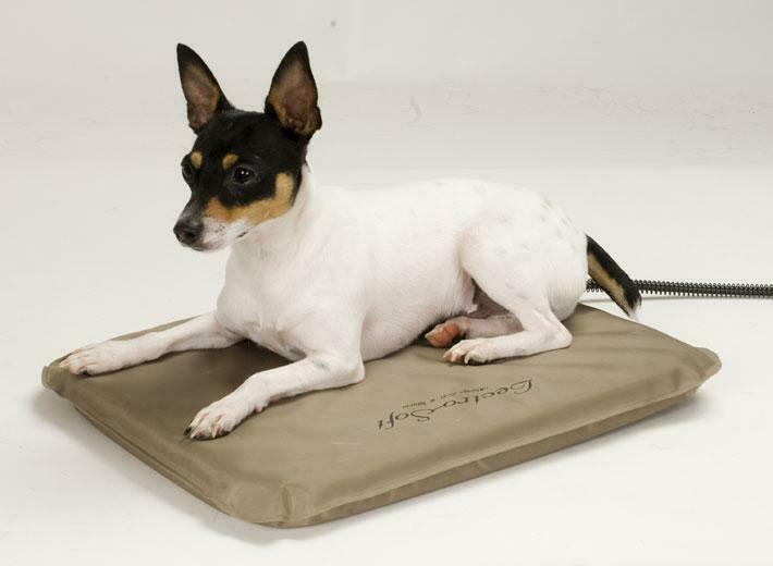 Outdoor Heated Cat Beds Reviews