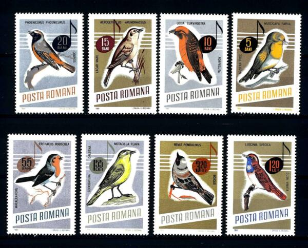 Gb Uk Mk 1980 VÖgel Schafstelze Wagtail Carte Maximum Card Mc Cm D6029 Stamps