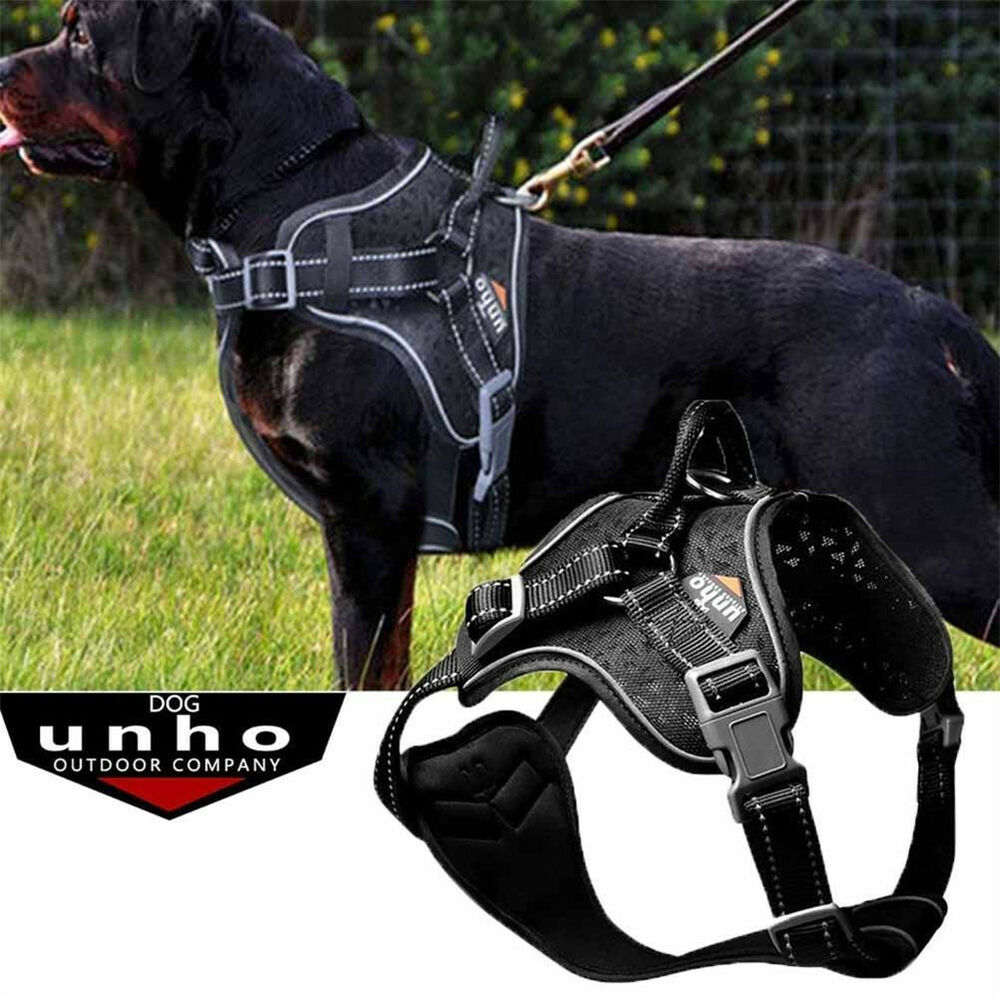 Best No Pull Dog Harness Uk