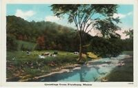Antique POSTCARD c1910-20s Greetings from FRYEBURG, ME MAINE Unused