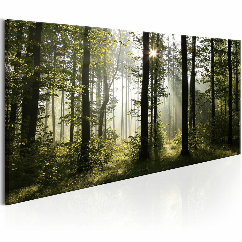 leinwand xxl bilder kunstdruck wandbilder wald landschaft natur c b 0262 b a ebay. Black Bedroom Furniture Sets. Home Design Ideas