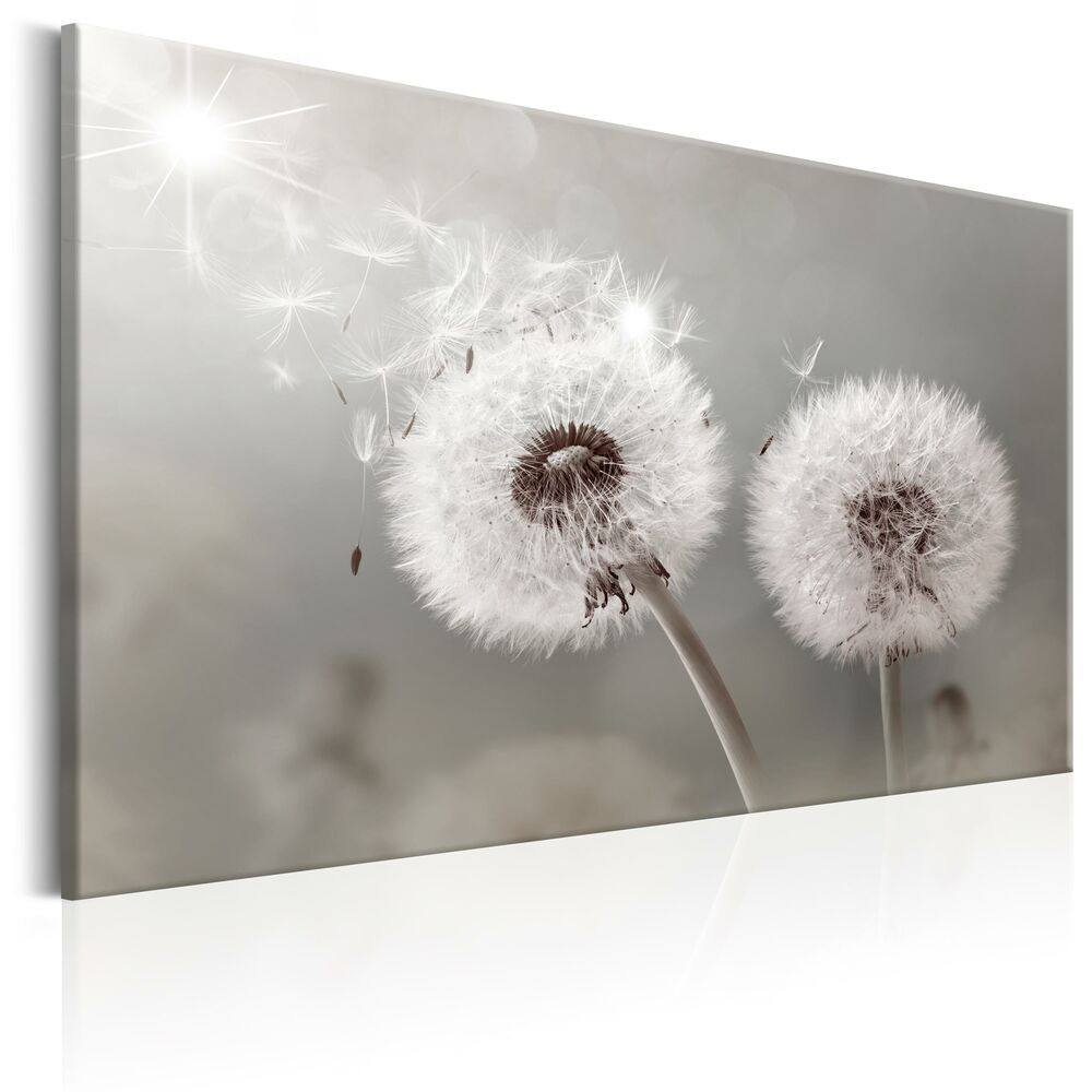 wandbilder pusteblume leinwand bilder xxl natur kunstdruck grau b c 0177 b a ebay. Black Bedroom Furniture Sets. Home Design Ideas