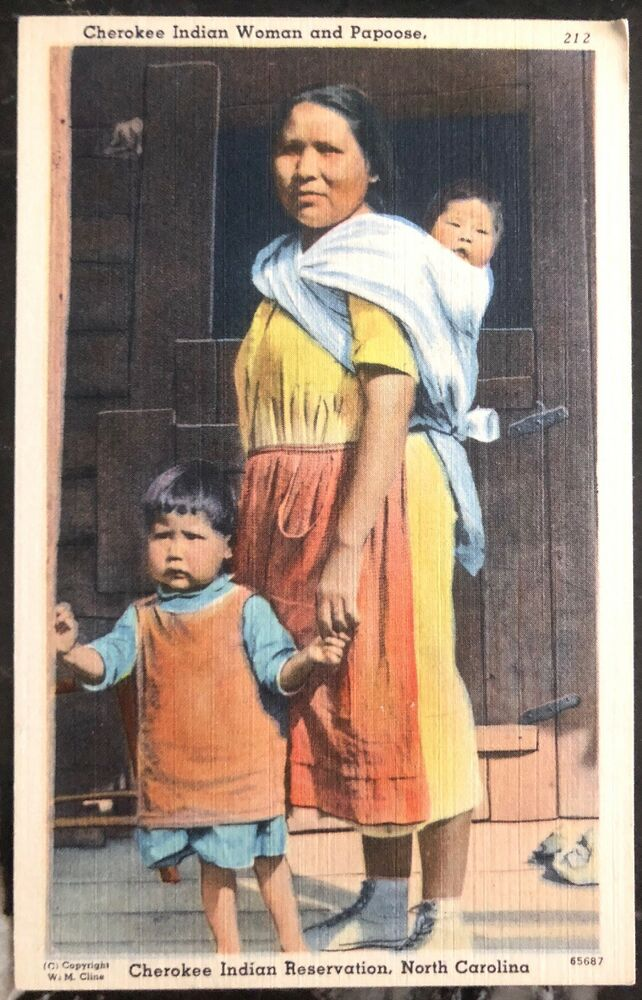 Mint Usa Ppc Picture Postcard Native American Cherokee Indian Woman