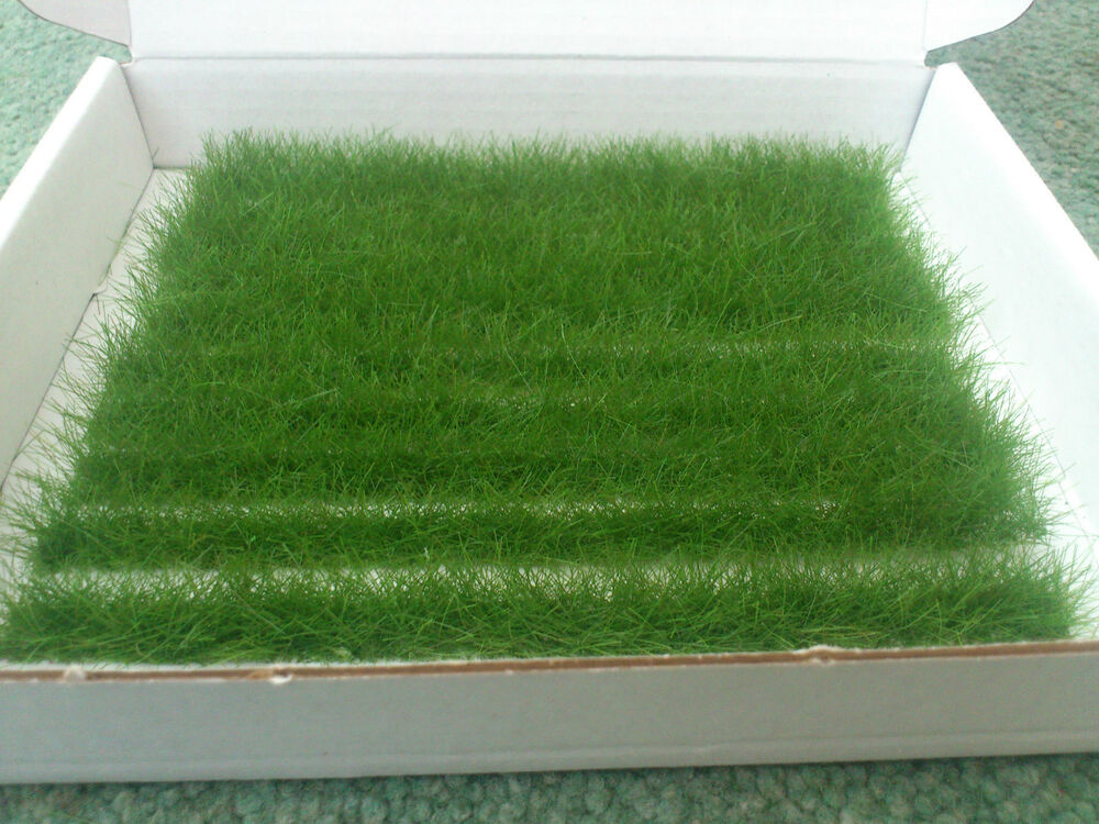 Grass strip effects on runoff and soil loss PDF Download.