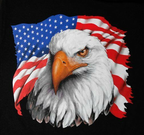 0675c6d47dbd2 Details about GORGEOUS UNITED STATES OF AMERICA BALD EAGLE PATRIOTIC USA  FLAG T-SHIRT 587