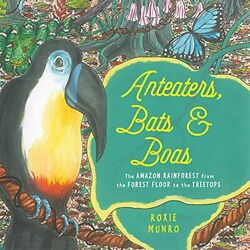 `Munro, Roxie`-`Anteaters, Bats & Boas: The Amazon Rainforest From The HBOOK NEW