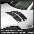 Dodge Charger 2015 2016 2017 2018 2019 Fender Hash Side Accent Stripes Decals