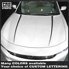 Dodge Charger 2015 2016 2017 2018 2019 Hood Spear Accent Decals Stripes