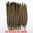 10-200 Pcs 25-75cm 10-30in Natural Ringneck Pheasant Tail Feathers Diy Carnival
