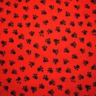 Black Paw Prints On Redyellowpink By Michael Miller Fabrics - By The Yard