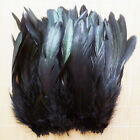 Wholesale 50100pcs Beautiful Rooster Tail Feather 6-8inch15-20cm Hot