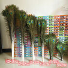 Wholesale Beautiful Natural Peacock Feathers Eyes 10-40 Inches25-100 Cm