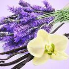Lavender Vanilla Fragrance Oil Candlesoap Making Supplies Free Shipping
