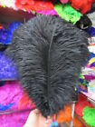 Wholesale 5-100pcs Of Natural Ostrich Feathers 6-24inch 15-60cm White Feathers
