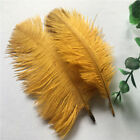 50pcs Beautiful Natural Ostrich Feathers 6-24 Inches 15-60 Cm 16 Colors
