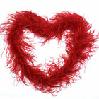 Diy 72inches Natural Monolayer Ostrich Feathers Boa For Party Creative Pick
