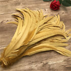 Wholesale 10-100pcs Special Color Cock Tail Feathers 12-14 Inch 30-35 Cm