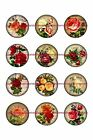 Roses 1 Circles Bottle Cap Images. 2.45-5.50  Free Shipping