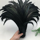 Wholesale 1050100500pcs Black Rooster Tail Feathers 10-18 Inches25-45cm
