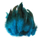 100pcs Fluffy Beautiful Rooster Feather Fringe Decoration Home Craft Diy 6-8