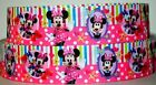 Grosgrain Ribbon 78 1.5 Disney Minnie Mouse Daisy Duck Printed Ref12