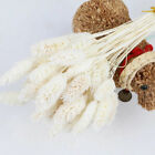 Dried Flowers Bunch Wedding Garden Home Decor Craft Gifts 20pcs Natural Dry