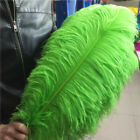 Wholesale 10-200pcs High Quality Natural Ostrich Feathers 15-60cm 6-24inch