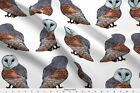Barn Owl Nature Animals Fabric Printed By Spoonflower Bty