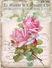 Shabby Chic Vintage Pink French Rose On Lace Fabric Block Quilting Sewing Fb 251