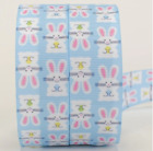 Easter Printed Bunny Grossgrain Ribbon Tape Crafts Accessory Spring Party Supply