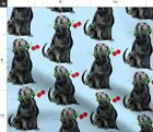 Black Lab Roses Retriever Hunting Dogs Spoonflower Fabric By The Yard