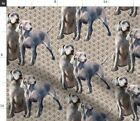 Weimaraner Dogs Floral Hunting Pet Portrait Spoonflower Fabric By The Yard