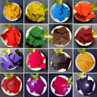 Candle Wax Dye 5g - Container Wax Scented Candle Making Wax Flakes Material