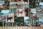Wildlife Nature Patch Deer Bear Moose Pinecone Trees Pier Cotton Fabric S10