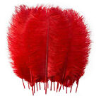 1025pcs Wholesale 8-10in Ostrich Feathers Party Centerpiece Wedding Supplier