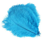 51025pcs 14-16in Natural Ostrich Feathers Crafts Making Wedding Party Decor
