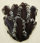 Curly Nagorie Goose Feather Pads 38 Colors To Choose From Headbandsbridal