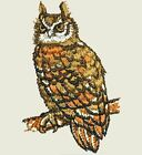 32 Owl Machine Embroidery Designs - Cdusbfloppy - 11 Formats