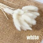Decor Artificial Flower Dried Flowers Artificial Decorations Rabbit Tail Grass