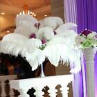 1100 Pcs Wholesale Quality Natural Ostrich Feathers 12-14 Party Table Decor