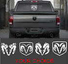 Dodge Ram Head - Perfect Vinyl Decal Sticker For Your Trucks Rear Window White