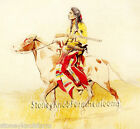 Blackfoot Indian Rider Native American Diy Counted Cross Stitch Pattern
