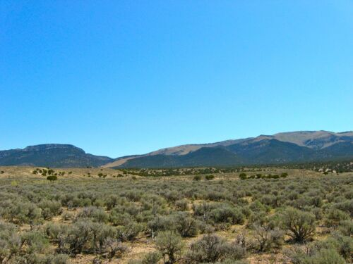 10 ACRE ELKO NEVADA RANCH W MINERAL RIGHTS! $195 DOWN $100 MONTH & 0% INTEREST! in Real Estate, Land | eBay
