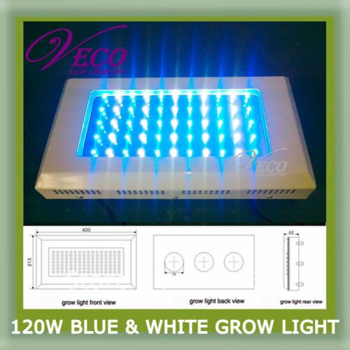 120W LED GROW Aquarium Coral Reef Tank BLUE WHITE Light LAMP AQUA LAMP in Pet Supplies, Aquarium & Fish, Aquariums | eBay