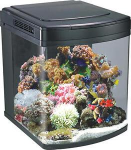 128L-Marine-Aquarium-Nano-Fish-Tank-with-150w-Halide-Cabinet-Inc-Boyu ...