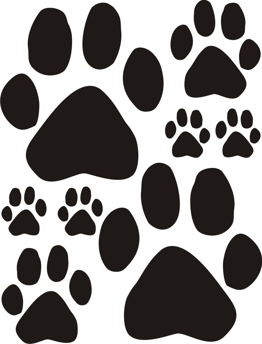 """16 Dog Paw Print Window Wall Door Car Stickers 21 Colours 3 Sizes 5 7"""" 3 1"""" 1 6"""""""