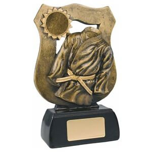 Sporting goods gt martial arts gt trophies